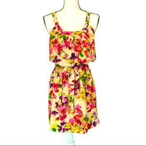 EXPRESS Floral Ruffle Dress Multi-Color Size S